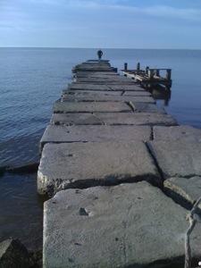 20121108-094636.jpg